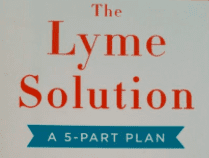 The Lyme Solution Review